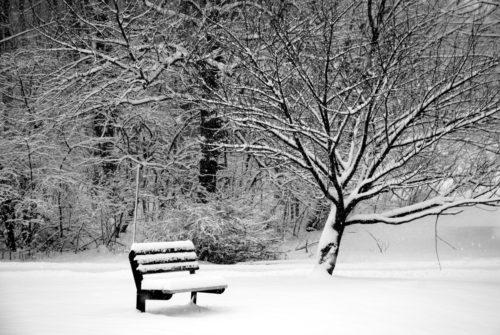 giroux-genevieve_dehors-novembre