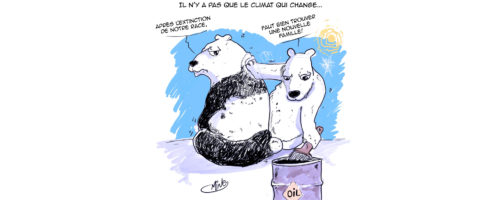 Amine climat ours 2